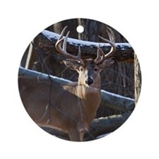 Trophy Whitetail Deer D1342-029 Round Ornament