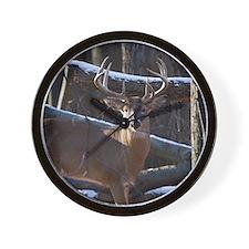 Trophy Whitetail Deer D1342-029 Wall Clock