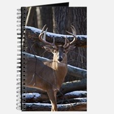 Trophy Whitetail Deer D1342-029 Journal