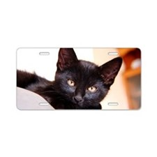 Spook the Kitten Aluminum License Plate
