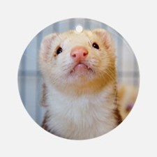 Silly Ferret Round Ornament