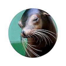 "SEAL BEAUTIFUL 3.5"" Button"