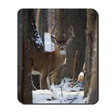 Trophy Whitetail D1316-014 Mousepad
