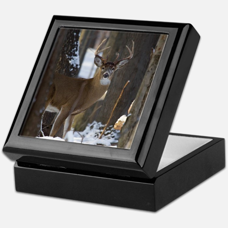 Trophy Whitetail D1316-014 Keepsake Box