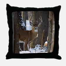 Trophy Whitetail D1316-014 Throw Pillow