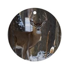 Trophy Whitetail D1316-014 Round Ornament