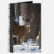 Trophy Whitetail D1316-014 Journal