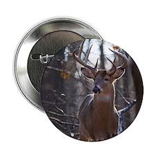 "Dominant Buck D1342-025 2.25"" Button"