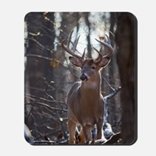 Dominant Buck D1342-025 Mousepad