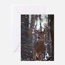 Dominant Buck D1342-025 Greeting Card