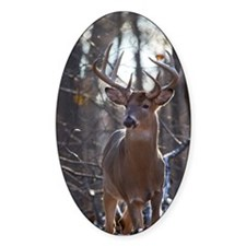 Dominant Buck D1342-025 Decal