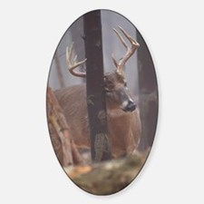 Buck Rub D1314-062 Decal
