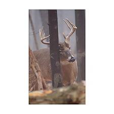 Buck Rub D1314-062 Decal