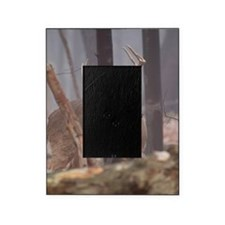 Buck Rub D1314-062 Picture Frame