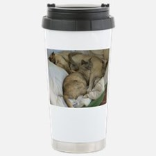 Burmese Cats asleep Travel Mug
