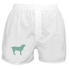 Paisley Entlebucher Boxer Shorts