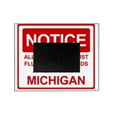 Flush Michigan Picture Frame