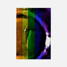 Rainbow Panel Rectangle Magnet