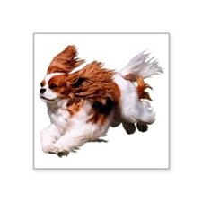 "Cavalier Running- Blenheim Square Sticker 3"" x 3"""