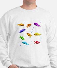 Rainbow Fish Jumper