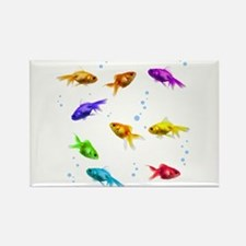Rainbow Fish Rectangle Magnet