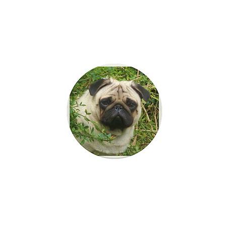 Pug in the Garden Mini Button
