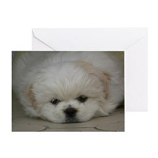 Pekingese Puppy Greeting Card