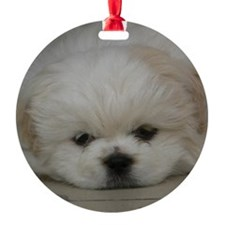 Pekingese Puppy Ornament