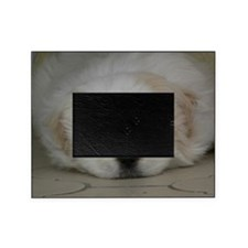 Pekingese Puppy Picture Frame