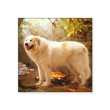 """Great Pyrenees Shower Curta Square Sticker 3"""" x 3"""""""