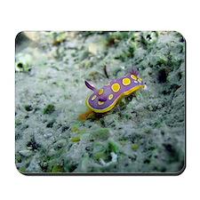 Croatian Undersea Calendar Mousepad