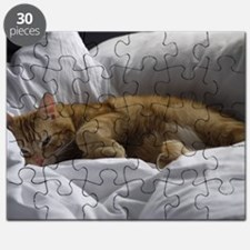 Afternoon Snooze Puzzle