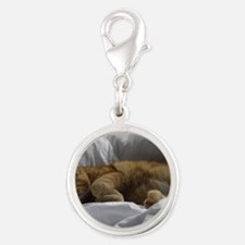Afternoon Snooze Silver Round Charm