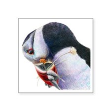 "Puffin with Fish Bird Art Square Sticker 3"" x 3"""