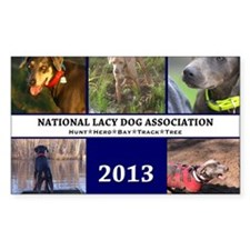 2013 Lacy Dog Wall Calendar Decal