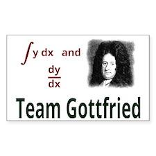 Team Gottfried Decal