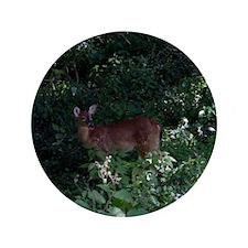 """Friendly Deer near Ft Ancient 3.5"""" Button"""