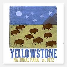 "Yellowstone Bison Scene Square Car Magnet 3"" x 3"""