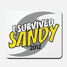 Hurricane Sandy Emergency I Survived 201 Mousepad