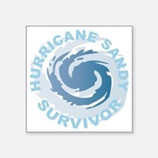 "Hurricane Sandy Survivor 20 Square Sticker 3"" x 3"""