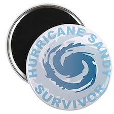 Hurricane Sandy Survivor 2012 Magnet