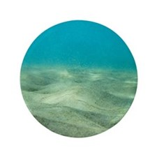 """Ocean Floor 3.5"""" Button"""