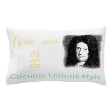 Calculus Leibniz style Pillow Case