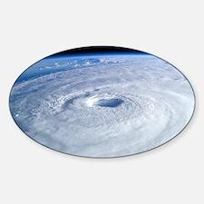 Hurricane Sandy Sticker (Oval)
