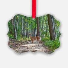 Doe in forest Ornament