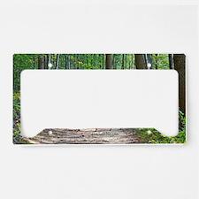 Doe in forest License Plate Holder
