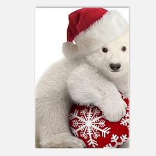 Polar Bear Cub Christmas Postcards (Package of 8)