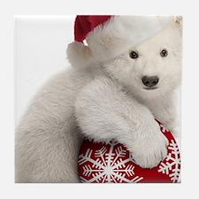 Polar Bear Cub Christmas Tile Coaster