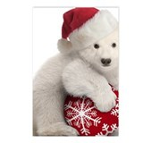 Christmas bear Postcards