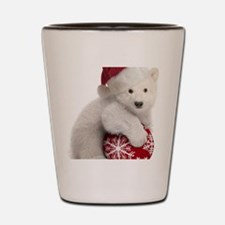 Polar Bear Cub Kids Christmas Shot Glass